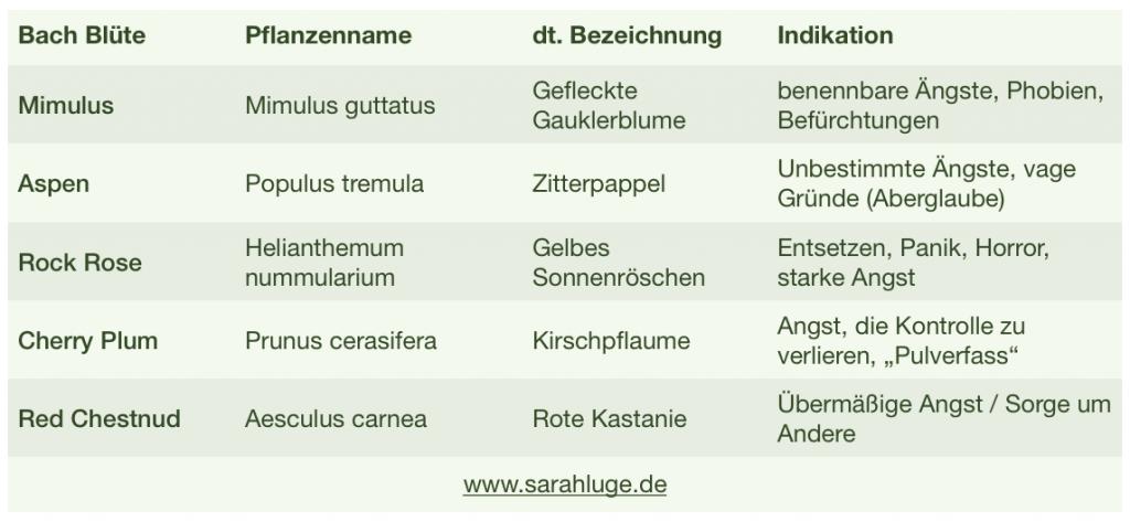 Bach-Blütentherapie Sarah Luge - Heilpraktikerin